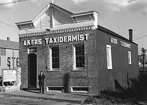 Photo of Akers Taxidermy Shop